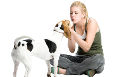 Raleigh Pet Sitters: The Costs of Starting a Pet Sitting Business